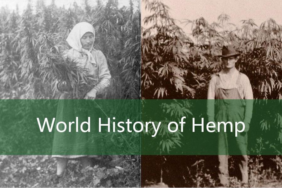 World History of Hemp