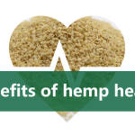 benefits of hemp hearts